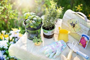 gardening tools for mothers day
